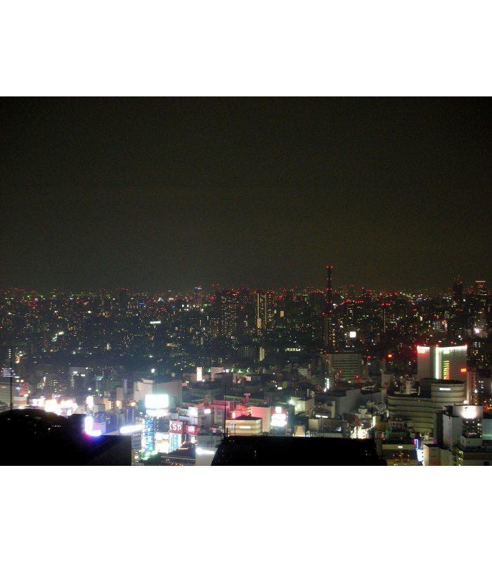 Tokyo de Noche. Colección Japan de Enrique Eguino.